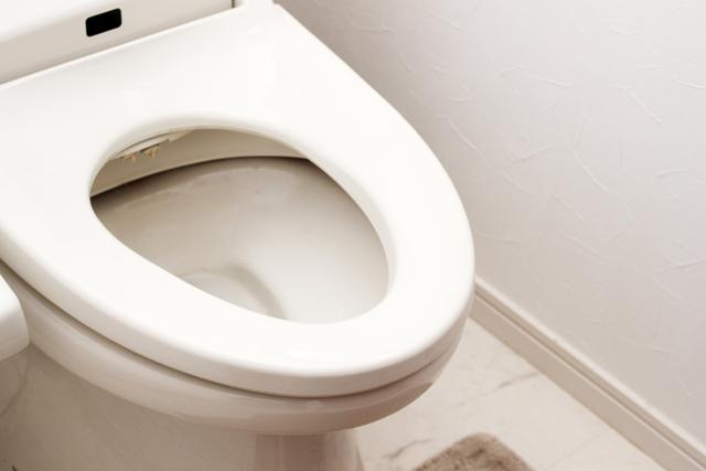 toilet-odor